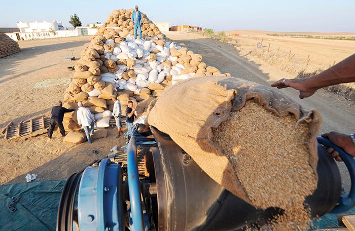 Nouveau d  cret modifiant le droit    l importation du bl   tendre