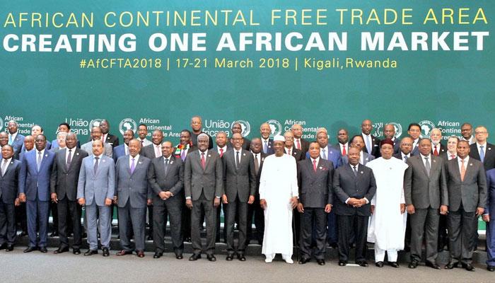 De la diversit   des trajectoires   conomiques africaines