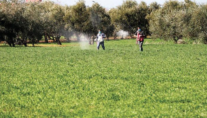 Une saison agricole de tous les espoirs