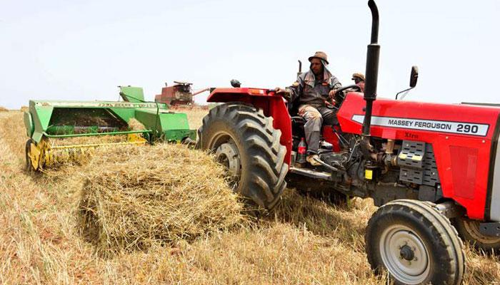 Production c  r  ali  re record de 103 2 millions de quintaux en 2020-2021